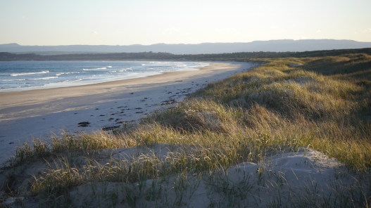 Jervis Bay, coastal study site